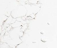 Marble Effect - Staturario